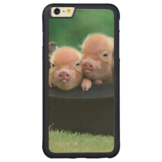 Three little pigs - three pigs - pig hat carved maple iPhone 6 plus bumper case