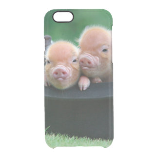 Three little pigs - three pigs - pig hat clear iPhone 6/6S case