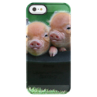 Three little pigs - three pigs - pig hat clear iPhone SE/5/5s case