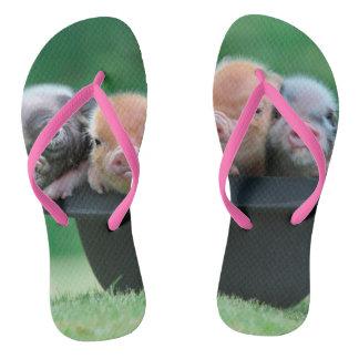 Three little pigs - three pigs - pig hat flip flops