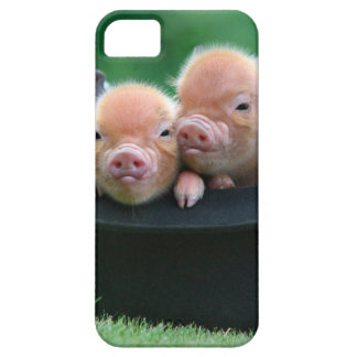Three little pigs - three pigs - pig hat iPhone 5 case