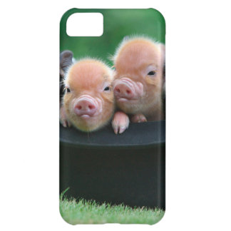 Three little pigs - three pigs - pig hat iPhone 5C cover