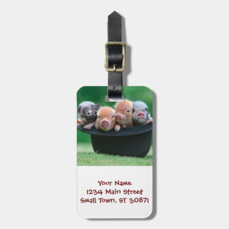 Three little pigs - three pigs - pig hat luggage tag