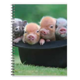 Three little pigs - three pigs - pig hat notebook