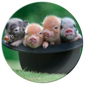 Three little pigs - three pigs - pig hat porcelain plates