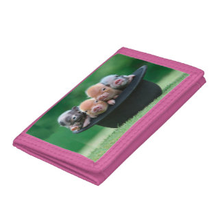 Three little pigs - three pigs - pig hat trifold wallets