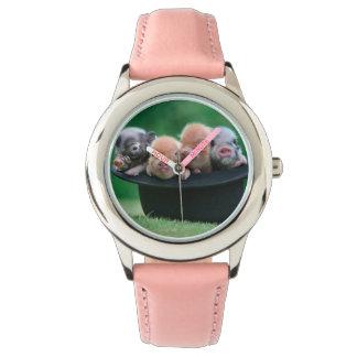 Three little pigs - three pigs - pig hat watch