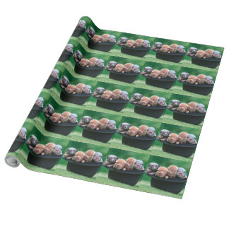 Three little pigs - three pigs - pig hat wrapping paper