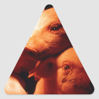 Three Little Pigs Triangle Sticker