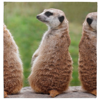 Three Mammals Napkin
