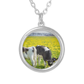 Three newborn calfs in spring dandelions meadow silver plated necklace