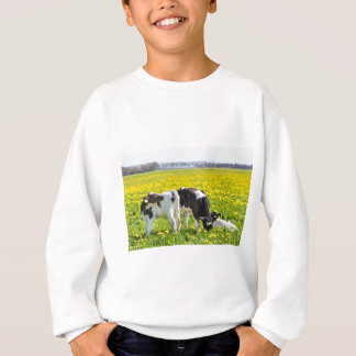 Three newborn calfs in spring dandelions meadow sweatshirt