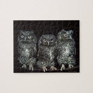 three owls jigsaw puzzle