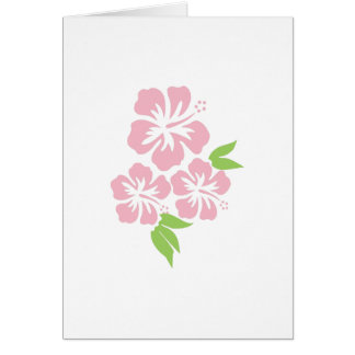 Three Pale Pink Hibiscus Tropical Flowers Card
