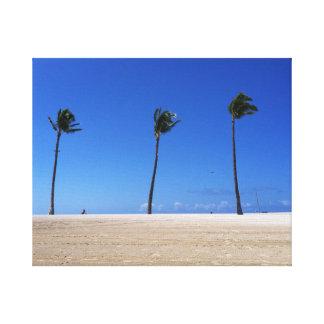 Three Palms, One Beach Canvas Print