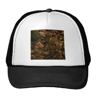 Three parasol mushrooms in the forest 2 trucker hat