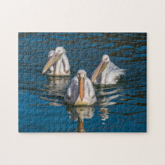 Three pelicans photo puzzle
