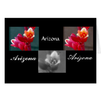 Three Penstemon flowers, Arizona Card