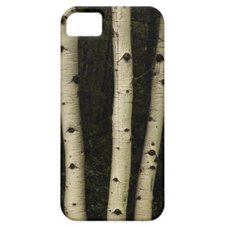 Three Pillars Of The Forest iPhone 5 Case