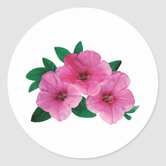 Three Pink Petunias Classic Round Sticker