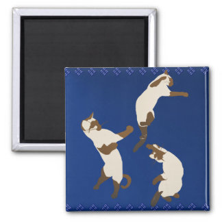 Three Playful Siamese Magnet