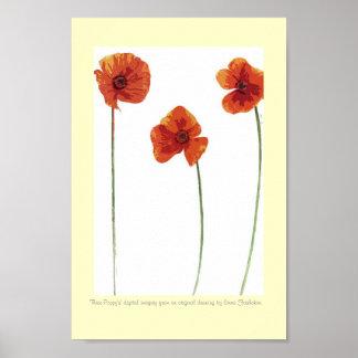 Three Poppy's Poster