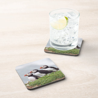 Three Puffins Drink Coasters