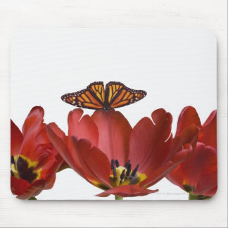 Three red tulips and a monarch butterfly against mouse pad