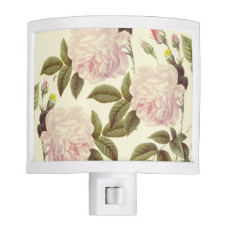 Three Rose Cream Night Lite