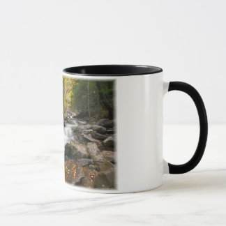 Three Seconds in Fall Mug
