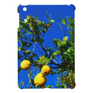 Three Sicilian Lemons Case For The iPad Mini