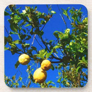 Three Sicilian Lemons Coaster