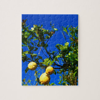 Three Sicilian Lemons Jigsaw Puzzle