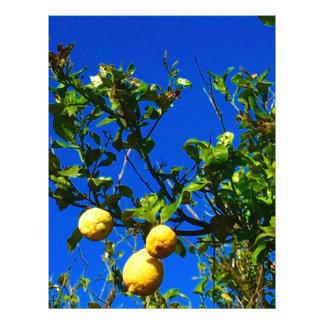 Three Sicilian Lemons Letterhead