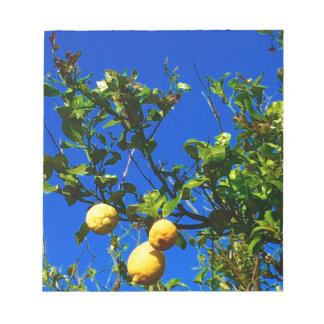 Three Sicilian Lemons Notepad