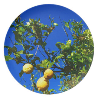 Three Sicilian Lemons Plate