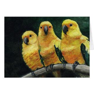"""Three Sun Conures"" Bird Art  Greeting Card"