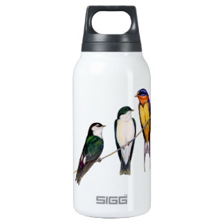 Three Swallows Insulated Water Bottle