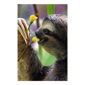 Three-Toed Tree Sloth Stationery Design