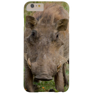 Three Warthog Piglets Suckle On Their Mother Barely There iPhone 6 Plus Case