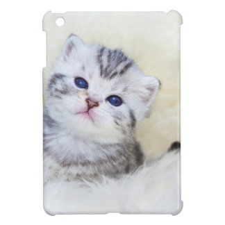 Three weeks old young cat sitting on sheep fur iPad mini case