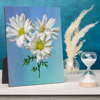 Three White Daisies Plaque