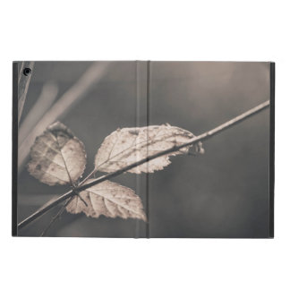 Three winter leaves iPad air case