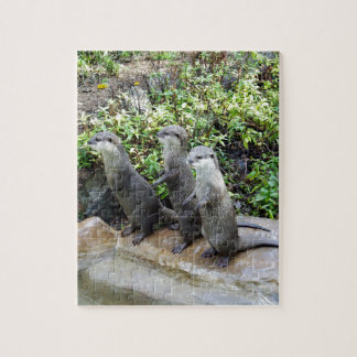 Three_Wise_Otters,_ Puzzle