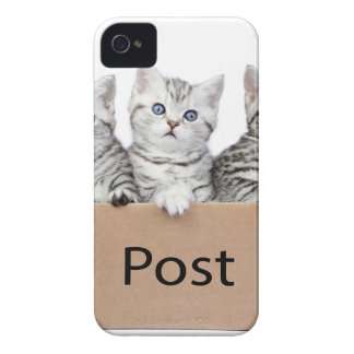 Three young cats in cardboard box on white Case-Mate iPhone 4 cases