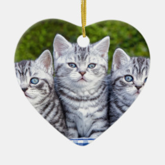 Three young silver tabby cats in checkered basket ceramic heart ornament