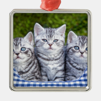 Three young silver tabby cats in checkered basket Silver-Colored square ornament