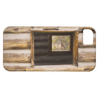 Through and Through Cabin Window iPhone 5 Case