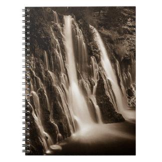 Through the Cracks Burney Falls Notebooks