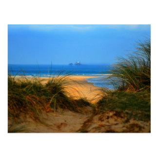 Through the Dunes Postcard
